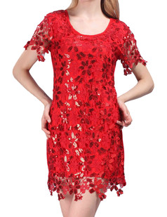 /sequin-embroidery-floral-short-sleeve-mini-dress-p-4014.html