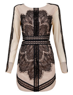 /long-sleeve-eyelash-lace-mesh-split-dress-black-p-4040.html