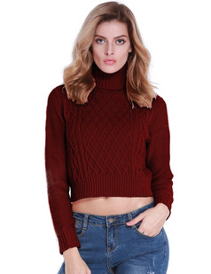 /turtleneck-twist-cable-knit-crop-sweater-burgundy-p-6976.html