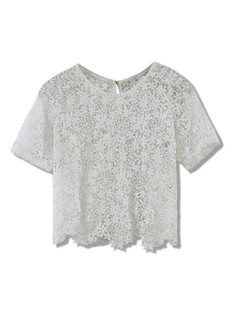 /short-sleeves-embroidery-floral-lace-crochet-crop-top-white-p-2466.html